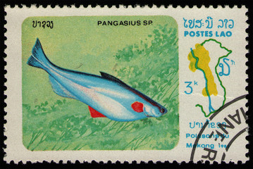 Wall Murals Chicken LAOS - CIRCA 1983: stamp 3 Laotian kip printed by Lao People's Democratic Republic, shows Pangas Catfsh (Pangasius sp.) food fish, Mekong River Fish serie, circa 1983