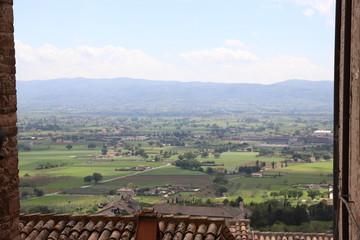Canvas Prints Olive landscape in umbria
