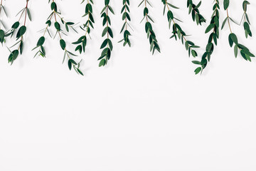 Eucalyptus branches and leaves on white background. Minimal composition of eucalyptus. Flat lay, top view, copy space Wall mural