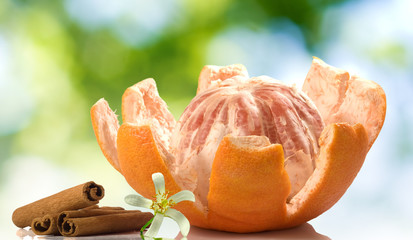 Fototapete - image of peeled grapefruit with flower and cinnamon sticks on a green blurred background