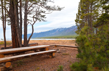 Baikal Lake. Convenient tourist parking between coniferous trees with wooden tables and benches in a nature park on the beautiful sandy shore of Barguzin Bay. Summer travel