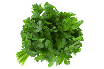Parsley herb bunch