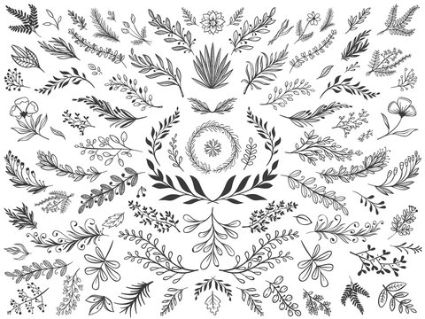 Hand drawn floral decor leaves. Sketch ornamental branches, decorative leafs and flowers vector illustration set. Collection of sprigs, natural design elements, monochrome floristic decorations.