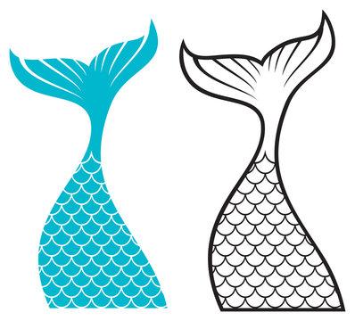 Mermaid tail design (vector illustration)