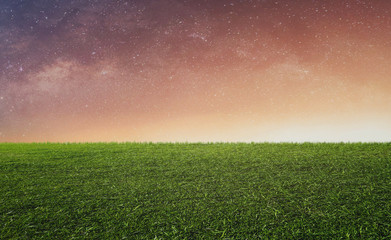 Aluminium Prints Salmon Starry sky with sunlight over green grass