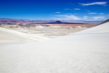 Landscape at the Puna de Atacama with volcano Carachi Pampa in the background, Argentina