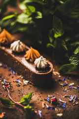 Contemporary dessert. Belgian chocolate, Swiss merenge and caramel tart with fresh mint leaves over rusty dark background, close-up, selective focus. Cafe or modern patisserie concept