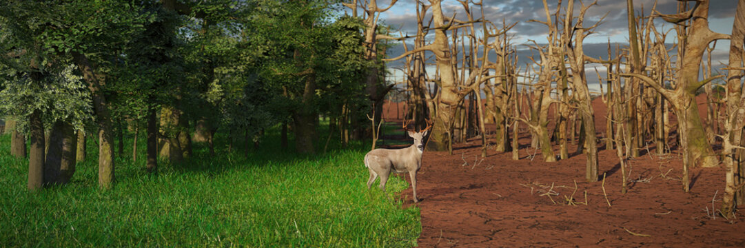 deer in past and future forest, climate change crisis, global warming impact on nature