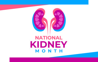 The National Kidney Month vector illustration. Banner, poster for prevention of kidney diseases. Two human kidneys in an abstract trend style. American educational campaign. Urogenital system.