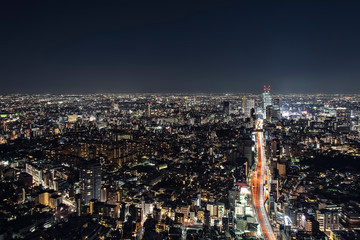 Wall Mural - Tokyo ciity by night viewed from high up