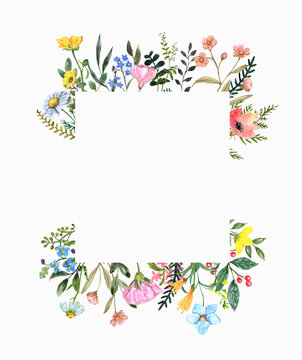 Watercolor wildflower frame on white background. Beautiful summer meadow flowers border, botanical backdrop for cards, invitations. Floral hand drawn illustration