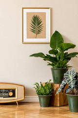 Retro interior design of living room with a lot of plants in green pots, vintage radio and gold mock up picture frame on the beige wall. Minimalistic concept of home decor. Template.