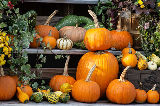 A stack of pumpkins with gourds and flowers at a farm stand
