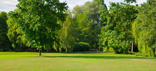 Summer park with extensive lawns. Wide photo.