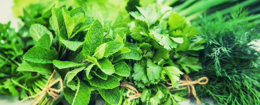 Fresh homemade greens from the garden. Isolate Selective focus.