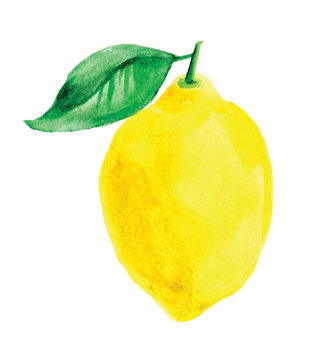 Watercolor lemon on white background.  Juicy ripe lemon with leaf.