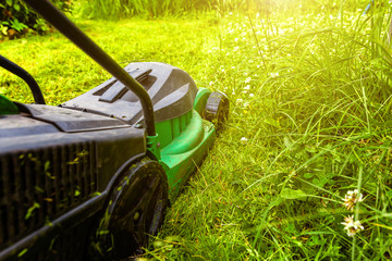Man cutting green grass with lawn mower in backyard. Gardening country lifestyle background. Beautiful view on fresh green grass lawn in sunlight, garden landscape in spring or summer season.