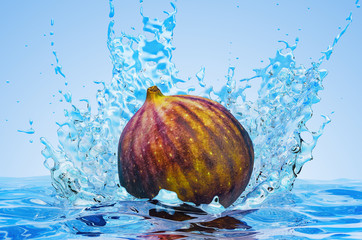 Common fig with water splashes, 3D rendering