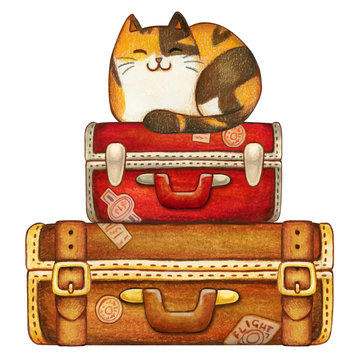Watercolor calico kitten on vintage travelling suitcases