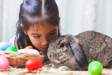 Cute asian child girl playing with cute Holland lop rabbit with love and tenderness at easter festive