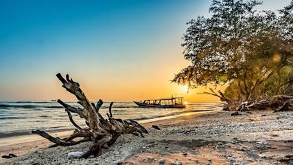 Printed kitchen splashbacks Beige Beautiful shot of scenery of sunrise in a seashore