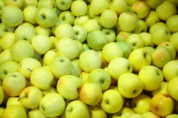 Wall Mural - Fresh picked green apples background in the harvest season