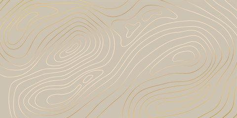 Fototapeta Luxury gold abstract topographic map background with golden lines  texture, 17:9 wallpaper design for fabric , packaging , web, geographic grid map vector illustration. obraz