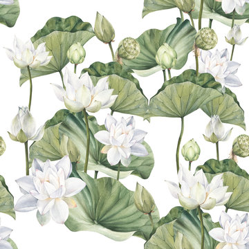 Hand drawn watercolor seamless pattern with white lotus flowers and lotus leaf