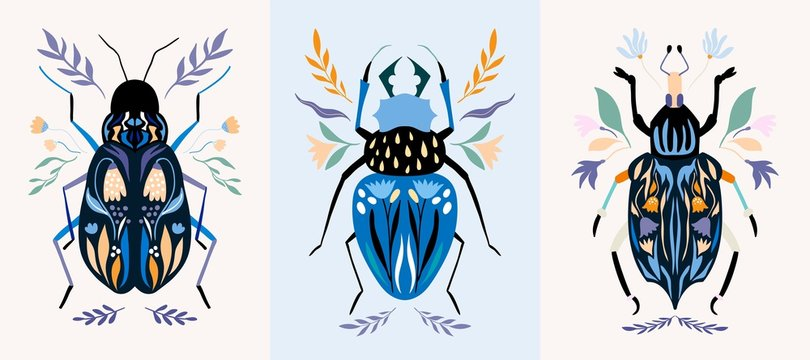 Insect cards/poster/banner set with decorative detailed bugs