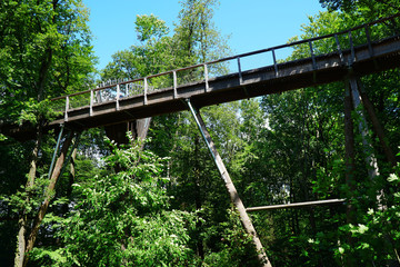 Forest path and trail of the treetop path called Baumwipfelpfad directly on the Saarschleife in the Saarland, Germany