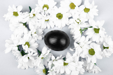 Easter egg in flowers on a white background. on the background. View from above. Spring Easter.