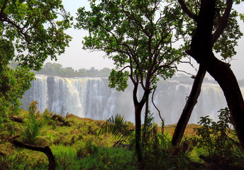 Victoria Falls (Mosi-o-tunya) surrounded by lush rain forest, taken from the Zimbabwean side, with the falls gushing over the rocky terrain.  Zimbabwe, Southern Africa