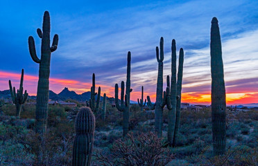 Sunset Time In North Scottsdale, Arizona