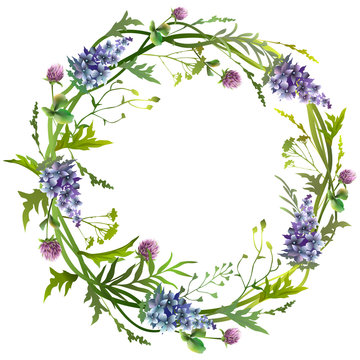 Floral romantic wreath with blue flowers  and green herbs. Vector illustration.