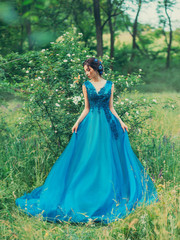 Mysterious girl holds dress both hands. green forest. shrub white flowers blue puffy lace evening dress. hair decorated with cornflowers. Elegant brunette hairstyle. summer spring. holiday ball. art