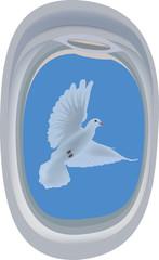finestra oblò di aereo con colomba in volo