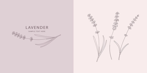 Card with Lavender. Vector sketches hand drawn illustration Wall mural