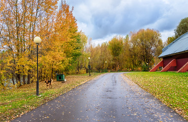 Moscow. October 4, 2019. Street Ostrovnaya. Beautiful autumn landscape with a wet road after rain on the territory of the golf club in Krylatskoye.