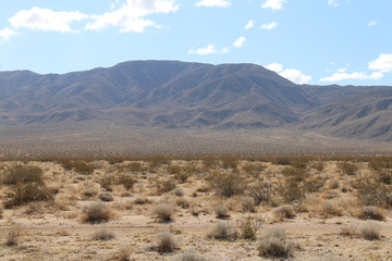 a dusty desert wilderness and distant mountains