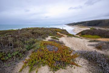 Beautiful California coastline landscapes