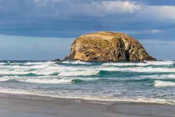 New Zealand, Dunedin, Allans Beach with sea stack in background