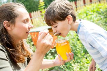 Little boy tasting natural honey