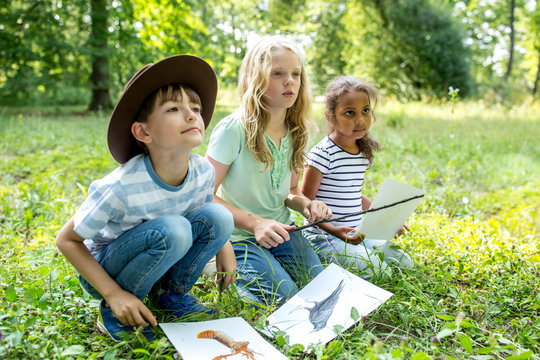 School children learning to distinguish animal species in forest
