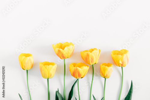 Beautiful composition of tulip, spring flowers. Yellow tulips flowers on white background. Valentine's Day, Easter, 8th march, Happy Women's Day, Mother's Day. Flat lay, top view, copy space