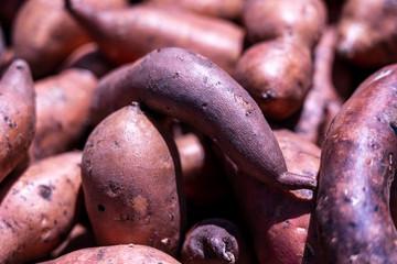 Pile of sweet potato or Kumara background