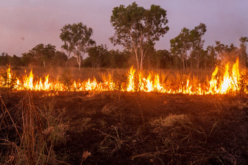 "Landscape view of ""Controlled Burning"" to reduce bushfire risk in the Kimberley, Australia. The indigenous people of the area traditionally burnt selected areas annually."