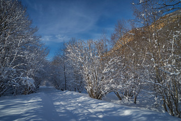 Image of a winter footpath.