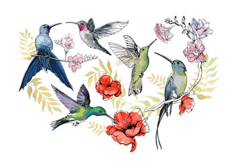 Set of hand drawn Hummingbirds with flowers for your design, greeting cards, posters. Collection of sketch colibri, watercolor floral print isolated on white background. Vector realistic illustration.