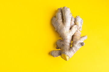Ginger root on bright yellow background. Ginger used as spice and treatment in alternative medicine with multiple benefits for health.