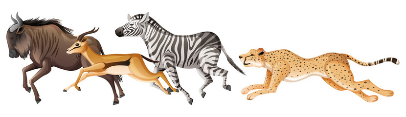 Many african animals running on white background